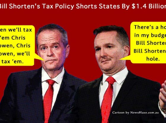 bill shorten tax policy