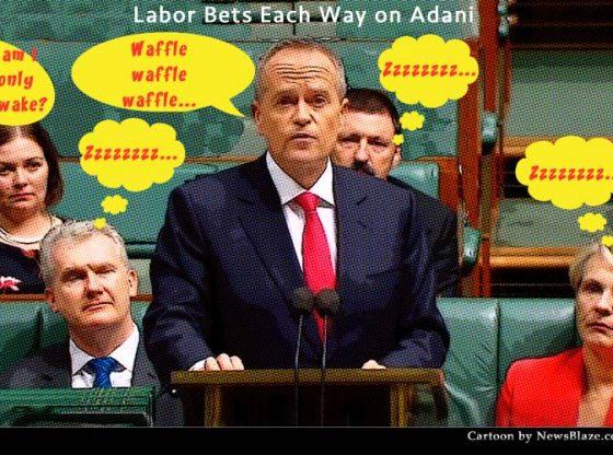 labor bets each way on adani